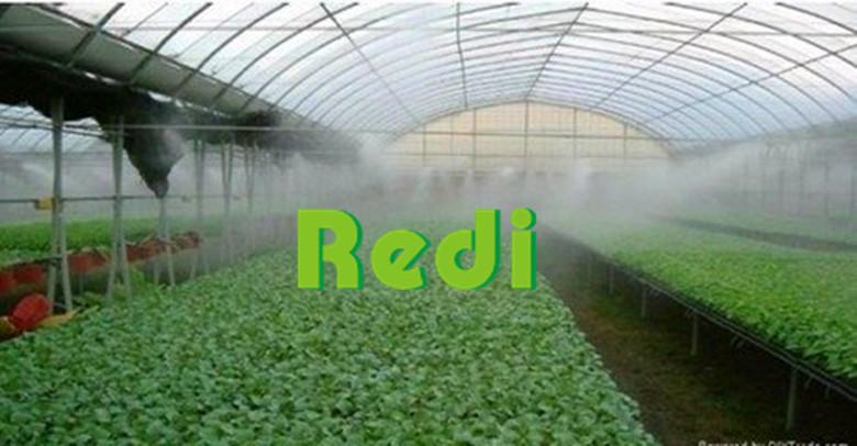 喷雾系统芽苗菜生产注意